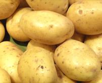 CALORIES Pommes de terre